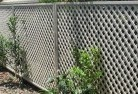 Beard Back yard fencing 10
